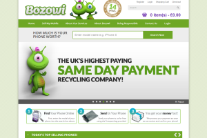 Bozowi.co.uk